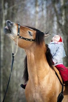 Smiles are contagious and can lead to utter happiness  #horse #horses #horselover      http://www.islandcowgirl.com/