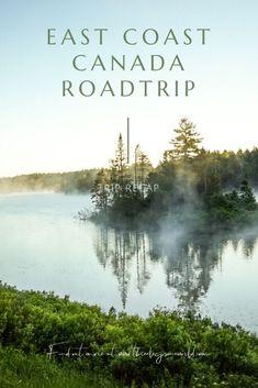 Trip Recap: East Coast Canada Roadtrip Acadia National Park, National Parks, East Coast Canada, Bull Moose, Cape Breton, New Brunswick, Public Transport, Dog Friends, State Parks
