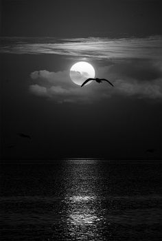 Beautiful world heaven — The Sunset perfection of the nature Amazing Sunsets, Amazing Nature, Beautiful Sunrise, Beautiful Moon, Jolie Photo, Pretty Pictures, Beautiful Landscapes, Beautiful World, Beautiful Images