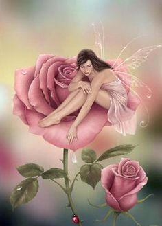 Fairies - fairies photo