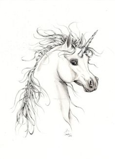 Wispy Haired Unicorn   Fantasy Equine Drawing Original Art by Tanya London