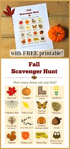 Get outside and explore Autumn changes with this fun & FREE printable Fall Scavenger Hunt list! Preschool Scavenger Hunt, Scavenger Hunt List, Outdoor Scavenger Hunts, Fall Preschool, Preschool Kindergarten, Cheap Fall Crafts For Kids, Easy Fall Crafts, Picture Scavenger Hunts, Autumn Activities For Kids