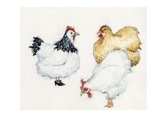 Huhn Hühner Print tragen Schuhe Abbildung 8 x 11