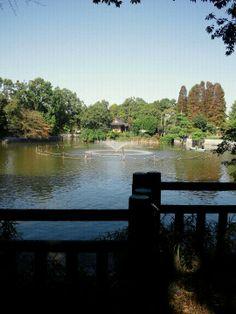 目黒区立 碑文谷公園 (Himonya Park) in 目黒区, 東京都