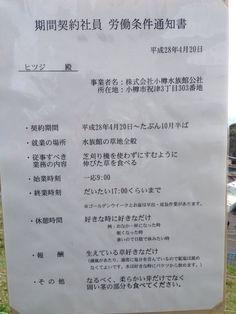 """""""家族サービスで小樽水族館に行ったら羊が草食っててさ 見たら労働条件が掲載されててコーヒー噴いた"""""""