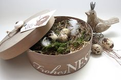 Nest and eggs in hat box