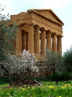 Valle dei Tempi, Agrigento, Sicily, Italy Wonderful Places, Beautiful Places, Places Around The World, Around The Worlds, Like A Local, Ancient Architecture, Sardinia, Historical Sites, Italy Travel