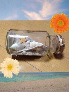 ハンドメイド:貝殻を使ったインテリア