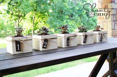 Mini Planter Boxes - maybe one big one for my deck - and a smaller one for the front porch!!