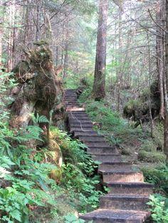 Perseverance Trail in Ketchikan, Alaska