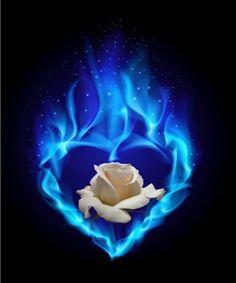 Nouvel article publié sur le site littéraire Plume de Poète - Naissance du sixième sens ! -  ILEF SMAOUI - Blue Roses Wallpaper, Heart Wallpaper, Flower Wallpaper, Beautiful Flowers Wallpapers, Beautiful Rose Flowers, Pretty Wallpapers, Love Heart Images, Heart Pictures, Blue Rose Tattoos