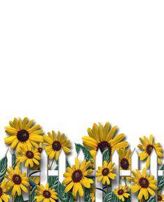 FLORES PNG (fondo transparente) - Tita K - Picasa Web Albums