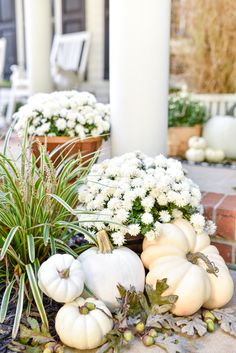 🌟Tante S!fr@ loves this📌🌟white pumpkins white mums