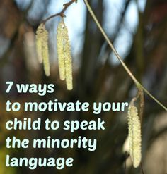 7 ways to motivate your child to speak the minority language « multilingual parenting – bilingual children