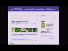 When search suggests something new.  Google Lesson 2.1