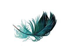 feather art - Szukaj w Google