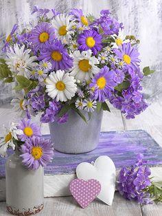 Happy Flowers, Flowers Nature, My Flower, Pretty Flowers, Purple Flowers, Spring Flowers, Flower Art, Wild Flowers, Spring Flower Arrangements