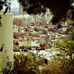 8x8  Coit Tower View  San Francisco City Wall by 9thCycleStudios, $25.00
