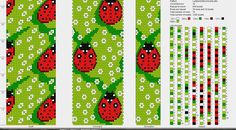 ladybug 29 around