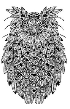 Zentangle Owl Owl Coloring Pages, Printable Coloring, Owl Wings, Owl Bird, Colour Images, Tangled, Zentangle, Pattern Design, Birds