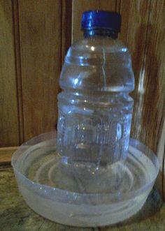 DIY Plastic Bottle Water Dispenser - PetDIYs.com