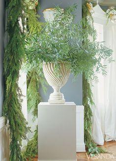 Spruce, Bay Leaf and Eucalyptus Cuttings
