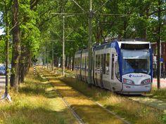20150629 Den Haag, Laan van Meerdervoort, HTM 4001 lijn 3 | by Wattman (trams, treinen, etc)