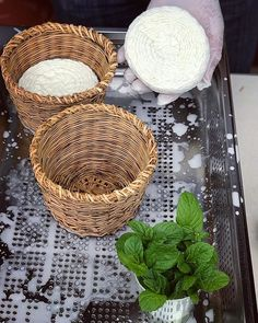 Making halloumi in traditional baskets in Cyprus. After separating the sheep & goats milk into curds & whey the curds are pressed into the baskets again & again pressing out the whey. Then it is cooked in its whey for around 45 minutes at the end adding salt & dried mint. Finally the traditional Cypriot technique is to take the flattened patties fill them with fresh mint & fold them over. #food&travel #food #cyprus #cheese #halloumi #basketweaving #craft #villagelife #travel #artisinal