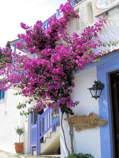 Skiathos, Greece  Pink and blue by Wosog, via Flickr