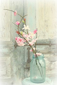 Spring blossoms by lucia and mapp, via Flickr