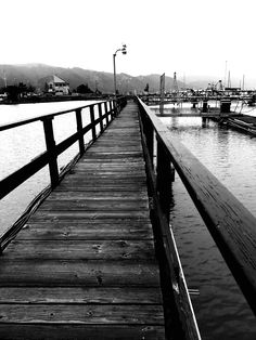 """""""Dock of The Misty Hills"""" A wooden walkway did I take, a dock in the misty hills. Shadowed by uncertainy, truth I sought, a battle of mighty wills. A sign, a Seagull, flight! it bid, stand not to battle, my soul, I hid. By dawn the war had raged to end, spent by tourmoil, the wills did bend, and I emerged to finish the walk, smiling as the misty hills did talk, of peace again across the sea, and peace within did come to me."""
