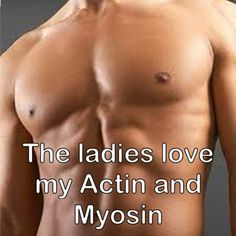 Best muscle building supplements for muscle growth. Learn which muscle building supplements works best to build muscle effectively and quickly. Burn Belly Fat Fast, Reduce Belly Fat, Reduce Weight, How To Lose Weight Fast, Weight Gain, Lose Fat, Losing Weight, Weight Lifting, Get Abs Fast