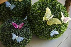 Garden Party Guest Dessert Feature   Amy Atlas Events