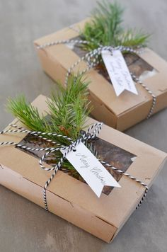 Gift Wrapping and Packaging | See through food boxes