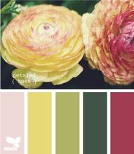 Shades of rose and soft golden yellow /greens (note the hues of peach these colors create)