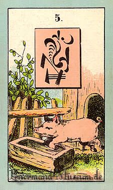 The Pig, by the Lenormand Fortune Telling Cards with mystic symbols