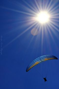 ..voando.. azul ...