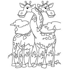 Is your child fond of giraffe? Here is a whole set of 20 fun free printable giraffe coloring pages that will definitely occupy your kid's time productively. Giraffe Coloring Pages, Cute Coloring Pages, Adult Coloring Pages, Coloring Pages For Kids, Coloring Sheets, Coloring Books, Kids Coloring, Giraffe Colors, Cute Giraffe