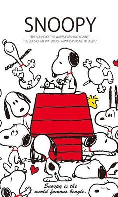 Best 保存はポチの画像 プリ画像 iPhone X Wallpaper 297096906663972669 – Mobile HD Wallpapers Snoopy Images, Snoopy Pictures, Peanuts Cartoon, Peanuts Snoopy, Charlie Brown Y Snoopy, Snoopy Comics, Snoopy Wallpaper, Snoopy Quotes, Peanuts Quotes