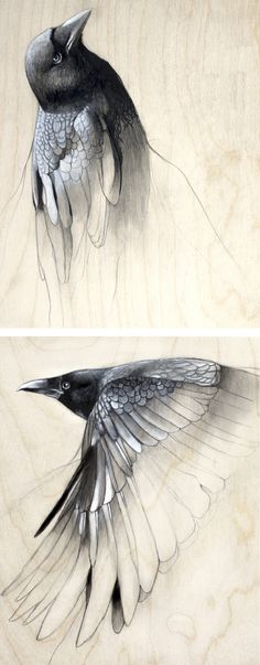 Raven Study No. 1 and 2 by Lauren Gray - Inspires me as I love working on wood, too.