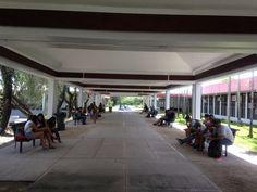 Diálogo periódico digital de la Universidad de Puerto Rico.