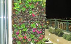 jardines verticales en balcon - Buscar con Google