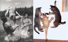 Posed male models, and cats doing the same thing. (Some of these pictures are shockingly accurate. Some of them are just funny.)