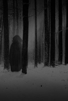 The Mysterious Dark Lady of the Midnight Forest.  'Tis said she wandered in one night and never wandered out...