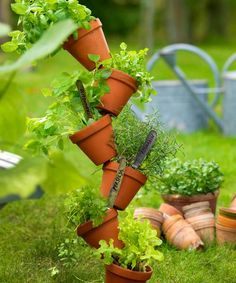 Stackable herb garden with terracotta pots. Herb Pots, Terracotta Pots, Watering Can, Diy Flowers, Herb Garden, Potted Plants, Gardening Tips, Outdoor Gardens, Diy And Crafts