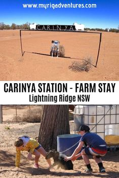 Carinya Station offers low cost camping in exchange for help around the farm. Just out of Lightning Ridge, Outback NSW. Outback Australia, Roadtrip Australia, South Wales, Travel Oz, Parks, Farm Stay, Lightning Ridge, Camping, Plan Your Trip
