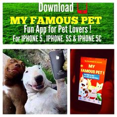 MY FAMOUS PET -- APP -- FOR IPHONE 5 And Newer !  Get it on the Appstore !  Fun app for all Pet Lovers !   Pets pet adoptapet adoptadog adoptacat be kind to animals cat cats puppy puppies rescuecat rescuedog servicedog service dog rescue dog cat peta humane society dogpark cat house dog house poodle German Shephard bulldog terrier beagle cute Great Dane pit bull pitbull Rottweiler yorkie husky bed dachshund boxer lab Labrador funny dogs cute sweater Dalmatian St. Bernard hello kitty…