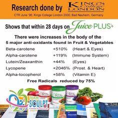 JP Research Studies