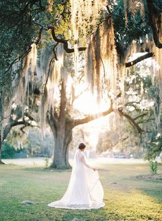 New Orleans Bridal Session - Photography: Nicole Berrett Photography - Spanish moss - garden wedding