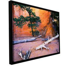 ArtWall Dean Uhlinger 'Devils Garden' Floater Framed Gallery-wrapped Canvas
